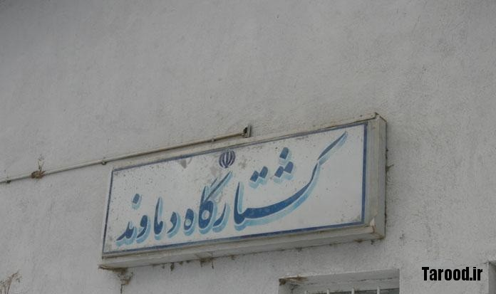 koshtargah
