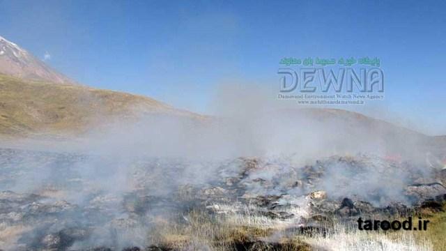 تصاویر/ اطفا حریق آتش سوزی در پارک ملی لار