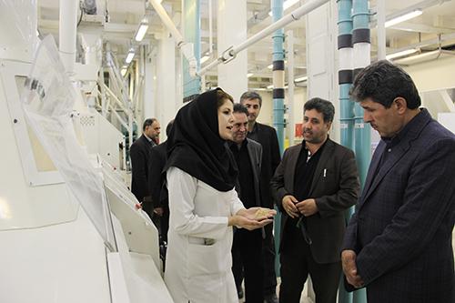 مروارید رودهن، بزرگترین کارخانه تولید آرد در خاورمیانه