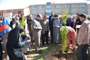 مراسم روز درختکاری در مدرسه سمیه آبسرد برگزار شد
