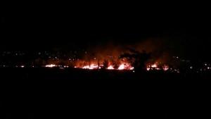 سه هکتار از اراضی گندم اسلامآباد دماوند سوخت