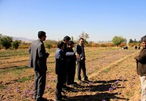 بازدید مسئولان از مجتمع کشاورزی و دامپروری هومند آبسرد