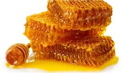 تولید بیش از ۳۵ درصد عسل استان تهران در دماوند