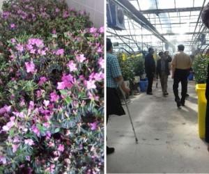 برپایی کلاس آموزشی احداث گلخانه در شهرستان دماوند