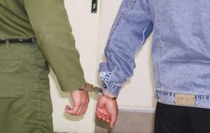 دستگیری یک سارق با ۱۰ فقره سرقت از ویلاهای روستای وادان دماوند