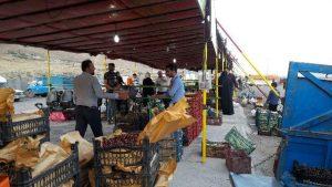 راهاندازی میدان میوه و ترهبار با بیش از ۴۰ غرفه محصولات باغی در روستای جابان/ احداث میدان میوه و ترهبار سرپوشیده در روستای جابان نیازمند مساعدت مسئولان است