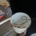 پلمپ واحد نانوایی در شهر آبسرد