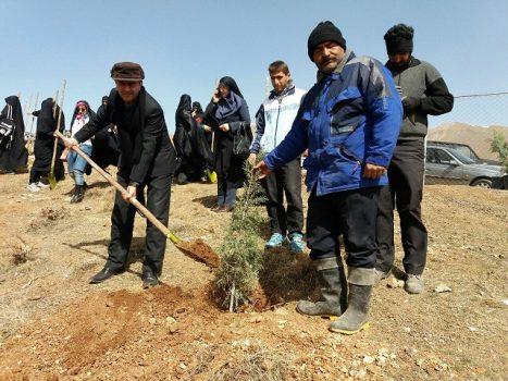 آیین کاشت نهال در شهر دماوند/غرس ۴۰۰ اصله نهال در منطقه گردشگری چشمهاعلا