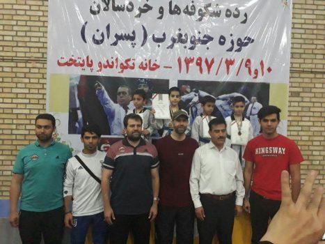تکواندوکاران شهرستان دماوند در مسابقات آزاد تکواندوی تهران درخشیدند