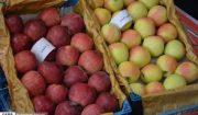 ۱۷۰ تن سیب دماوند برای عرضه به بازار قزاقستان بارگیری و ارسال شد