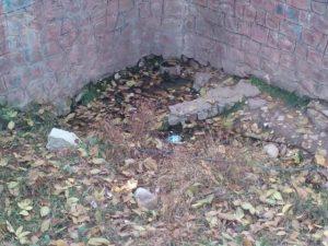 چشمه آب ترش و آب شور روستای زان در آبسرد (2)
