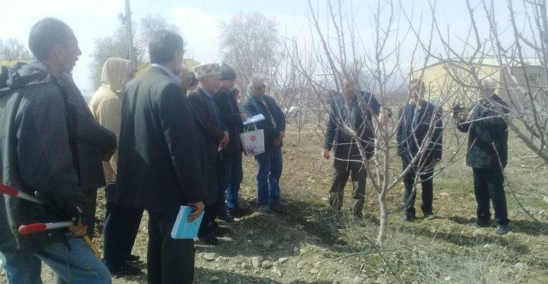 تشکیل کانون یادگیری و آموزش کشاورزی در دماوند (5)