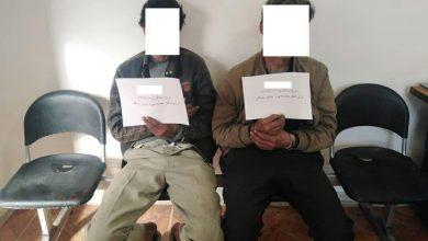 تصویر از سارقان اماکن خصوصی در شهر آبسرد با 9 فقره سرقت به دام افتادند